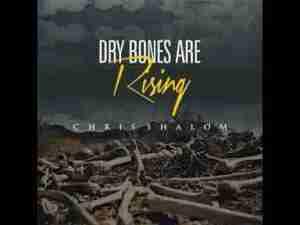 Video: Chris Shalom – Dry Bones Are Rising